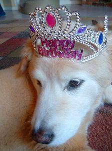 2007 ~ Maxine Olivia's 13th Birthday!
