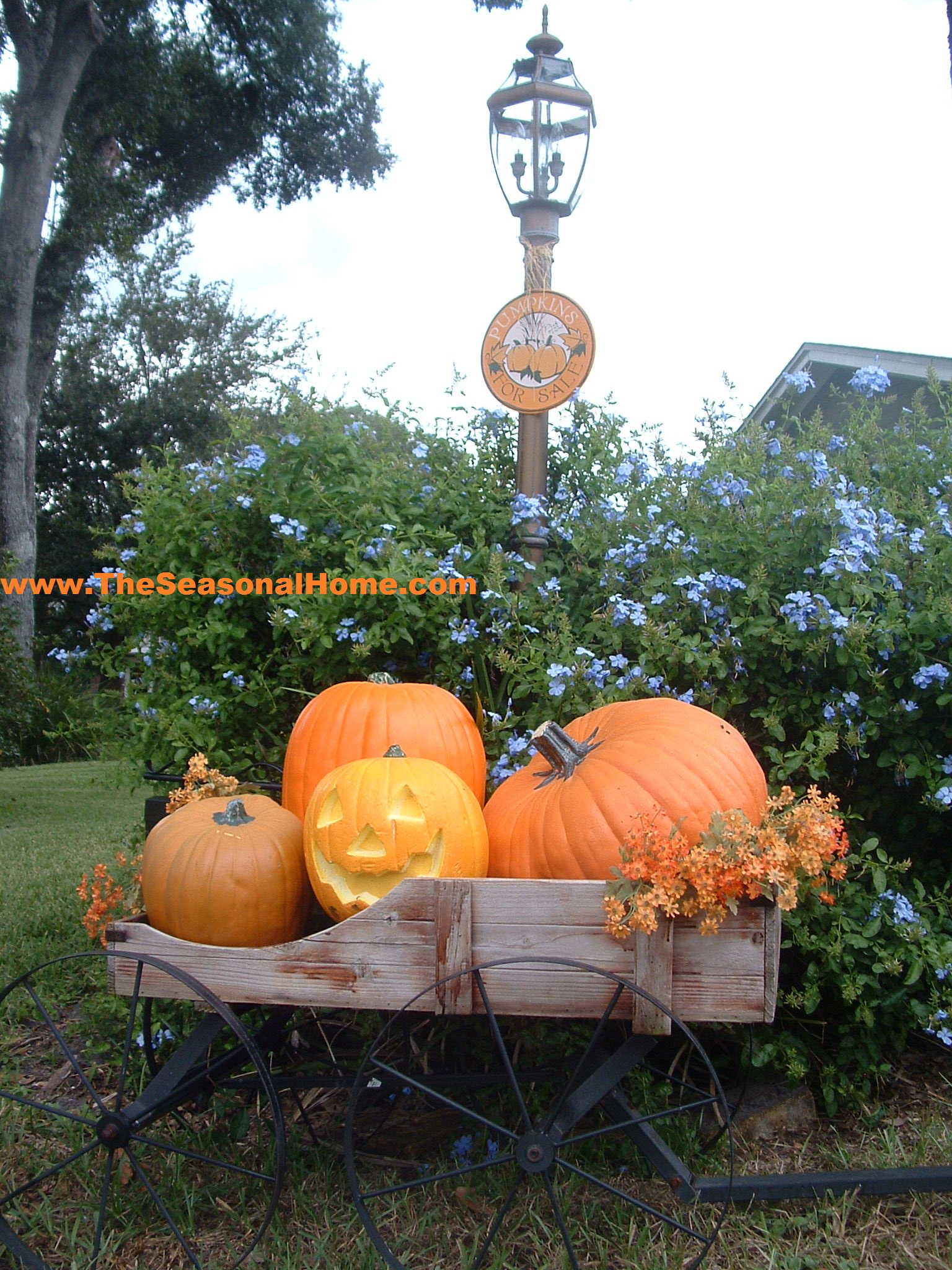 Fall Yard Decoration Ideas The Seasonal Home