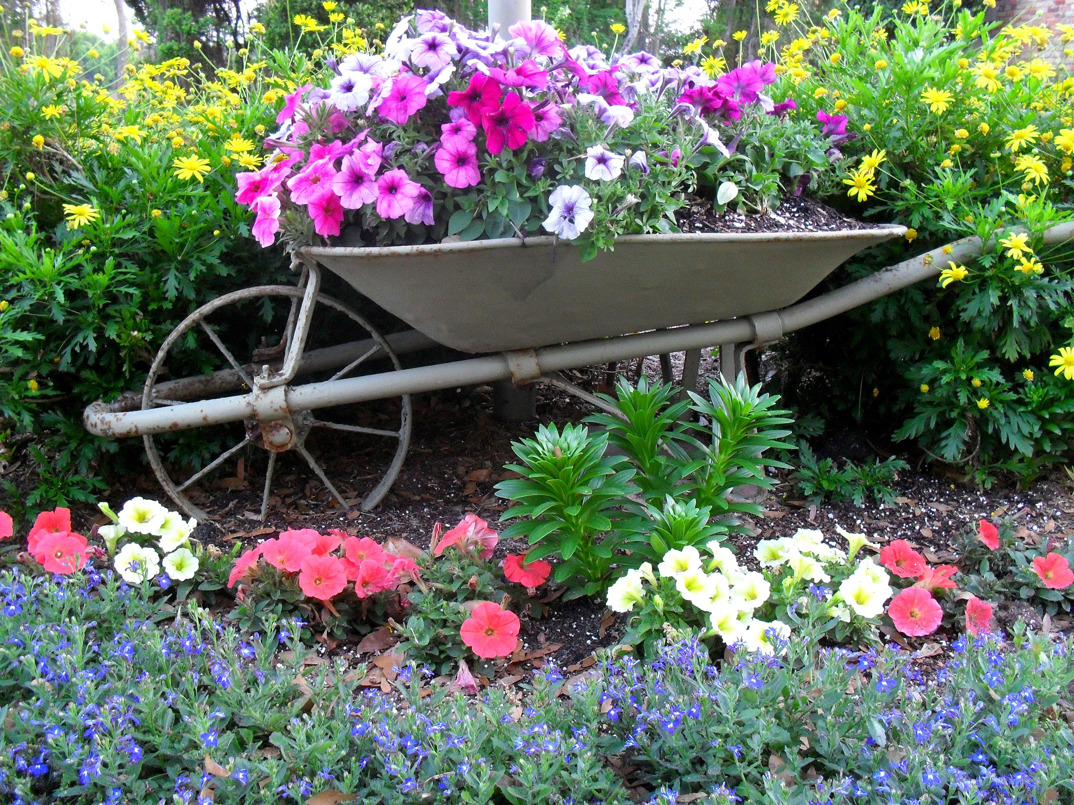 A beautiful garden on the 1st day of spring the seasonal - Jardines y paisajes ...